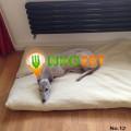 $T2eC16h,!zQE9s3suFC8BR--LTQNdQ~~60_57